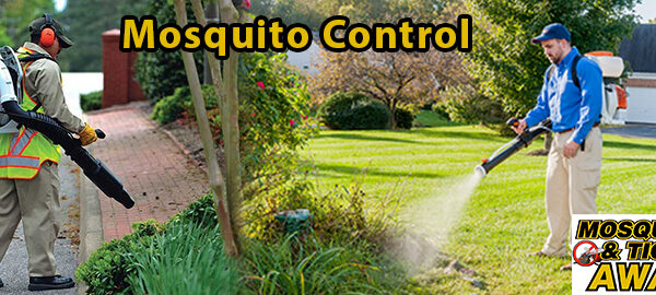 What Are The Benefits Of A professional Mosquito Control Company?